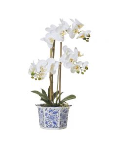 Butterfly Orchid Hampton Style Chinoiserie Pot 60cm