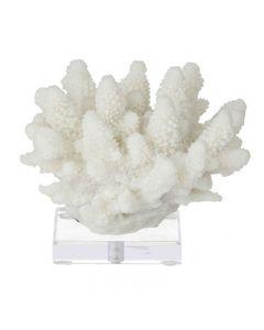 Coral Sculpt on Stand 15cm White Hampton Style Decoration