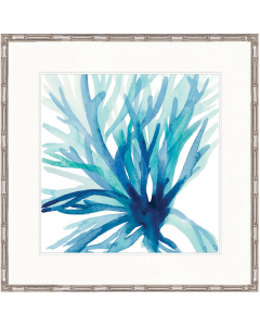 """Designer Boys Collections"" Watercolour Coral III Artwork, Seychelles Coral Collection"