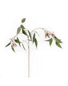 Hampton Style Eucalyptus Flowering Pink Colour 85cm
