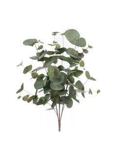 Hampton Style Eucalyptus Silver Dollar Bush Green Grey Colour 55cm
