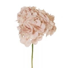 Hampton Style Hydrangea without Leaf Soft Pink Colour 46cm