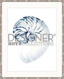 "Designer Boys Collections ""Exquisite Shell II (Indigo Blue)"" Artwork"