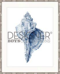 "Designer Boys Collections ""Exquisite Shell III (Indigo Blue)"" Artwork"