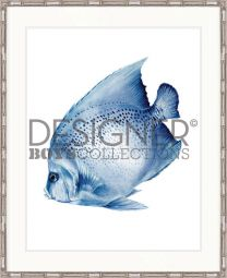 Exotic Fish III (Indigo Blue) - AVAILABLE IN 3 SIZES